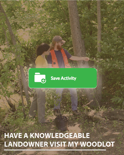 why save activity