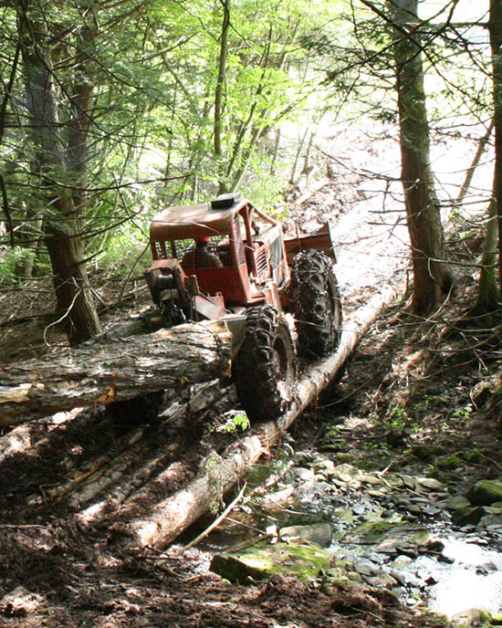 protect my trails and streams during logging